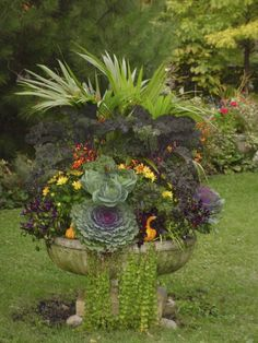 Fall Container by Avant Garden - 5 Fall container garden ideas