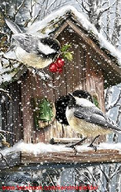 Birds with berries at a their bird house. Feeding in the winter. I added falling… Birds with berries at a their bird house. Feeding in the winter. I added falling snow to it. Merry Christmas Gif, Christmas Scenes, Christmas Past, Vintage Christmas, Cozy Christmas, Snow Pictures, Bird Pictures, Christmas Pictures, Beautiful Gif