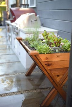Outdoor kitchen with an herb planter