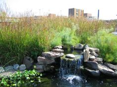 Fountain at Schwab Rehabilitation Hospital Rooftop Therapeutic Garden « Therapeutic Landscapes Network
