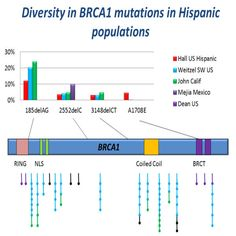 Making Genomic Medicine Affordable: Democratising breast cancer screening in hispanic populations leveraging genomics to improve cancer care of minority and underserved populations.  http://www.gigasciencejournal.com/content/4/1/50