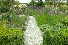 Gartenwege: Kies- oder Splittwege sind eine preisgünstige Form der Wegegestaltung. Denkbar ist auch ein Belag aus Rindenmulch oder aus noch preiswerterem Holzhäcksel. Damit der Weg sauber bleibt, ist eine Randeinfassung empfehlenswert.