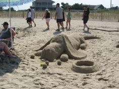 sand hound. this is great! CCO - neat beach vacation family project