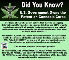 Marijuana Information | English (US)