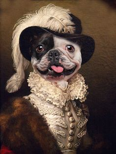 Funny Animal Pictures, Funny Animals, Steampunk Animals, Old Pug, Dog Portraits, Animal Party, Beautiful Dogs, Animal Paintings, Terrier