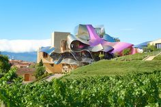 The Best Vineyard Designed by Starchitects Photos | Architectural Digest