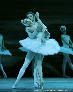 "© Marc Haegeman Svetlana Zakharova Светлана Захарова and Alexander Volchkov Александр Волчков, ""Swan Lake"""