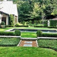 .@troyrhonegardens | Simple and green poolside garden.