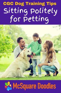 If you're prepping for your Canine Good Citizen Test or therapy dog test, helping your dog remain calm while new people pet him is a skill you and your dog must be comfortable with. Read my best tips for how I helped Bernie, our Australian Labradoodle, learn better impulse control around friendly strangers. Therapy Dog Training, Dog Training Books, Therapy Dogs, Dog Training Tips, Dog Obedience Classes, Dog Status, Dog Test, Impulse Control, Positive Dog Training