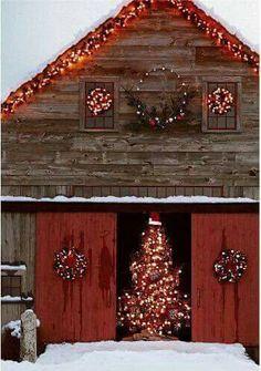 Classic barn Christmas lighting, bonus point for the Christmas tree 22 Days, Day Left, Christmas Time, Christmas Ideas, Christmas Gifts, Dutch, Christmas Presents, Dutch Language