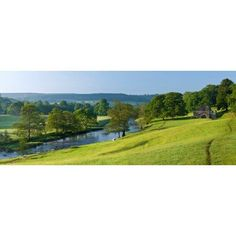 Trees on a hill Chatsworth House Peak District Derbyshire England Canvas Art - Panoramic Images (27 x 9)