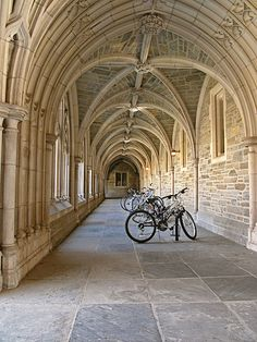 Love to walk the campus of Princeton University. University Of Pennsylvania, Princeton University, Us Universities, Creeped Out, Today's Man, Boston College, Dream School, Pretty Images, In God We Trust