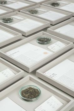 Paper & Tea, em Berlim – nova geração de lojas de chá | arktalk