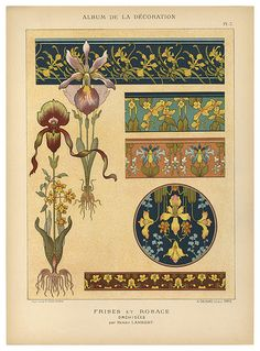 1900 - Pl. 7: Frises et Rosace; Orchidees, par Henry Lambert [Friezes and Rosette; Orchids, by Henry Lambert] - from Album De La Décoration. Paris: Librairie des arts décoratifs - via MCAD Library