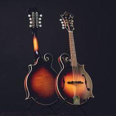 The Loar, LM 375, F-style mandolin