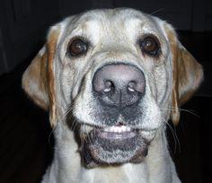 Just Smile!  My SOUL MATE!!