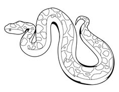 Snake-Coloring-Pages.jpg 1060×820 pikseliä