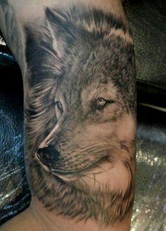 Tatuagem de lobo cinza no braço