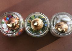 forcing bulbs in jars filled with marbles or beads - such a cute idea!