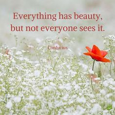 Confucius quotes Everything has beauty, but not everyone sees it.