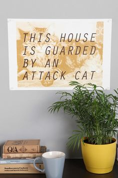 Beware. Attack cats on watch. #urbanoutfitters