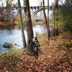 Why I ride a #cyclocross bike in #autumn - no road, no problem!