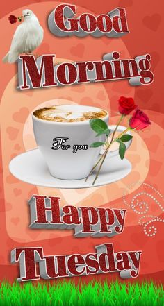 Good Morning Tuesday, Good Morning Gif, Good Morning Flowers, Good Morning Greetings, Good Morning Wishes, Happy Tuesday, Good Morning Images, Good Morning Quotes, Happy Day