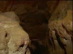 Cave art- short clip, perfect for Kids Also great Art videos / inspirations too