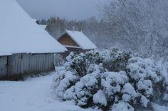 Жизнь горожанки в деревне: (-2) Теперь и у нас зима