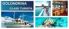GALAPAGOS CRUISES Ecuador, Galapagos Islands, Cruises, Tour Guide, Tours, Train, Yachts, Cruise, Travel Guide