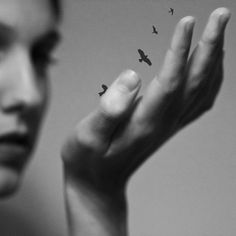 . . . we all have cocoons. . . it's the struggle to free ourselves, that makes us whole and gives us strength to fly.