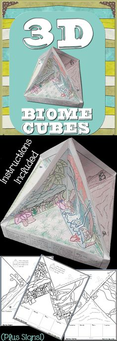 3D biomes! 8 biomes included. Cube pages, instructions and colorful posters included. $