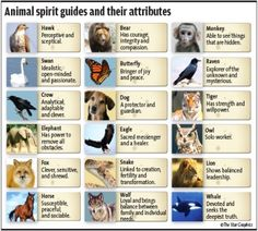 Read the article on Animal Spirits by star columnist T.Selva.    Animal spirits  ANCIENT SECRETS By T. SELVA  star2@thestar.com.my   Find ou...