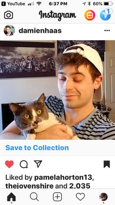 Smosh Squad, Bun Bun, Sander Sides, Attractive People, Sally, Picture Ideas, Youtubers, Star, My Love