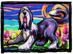 Bearded Collie w/Background Cool Dog