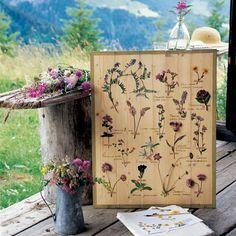 create your own botanicals  xo--FleaingFrance