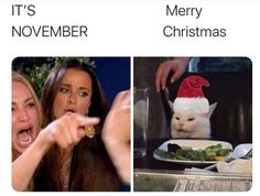 50 Best 'Woman Yelling at a Cat' Memes That Have Taken Over the Internet - Funny Gallery Stupid Funny Memes, Funny Relatable Memes, The Funny, Hilarious, Woman And Cat Meme, White Cat Meme, Meme Template, Christmas Humor, Christmas Hat