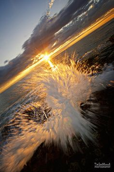 splash @ the beach