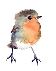 Baby Robin, Bird Painting Red Robin, GICLEE/Fine art print of original watercolor, nursery art gift by VerbruggeWatercolor on Etsy https://www.etsy.com/listing/222818355/baby-robin-bird-painting-red-robin