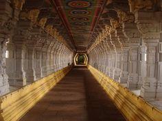 22 Best Kerala Tourism images in 2016   Kerala tourism