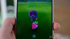 How to use a Razz Berry in Pokemon Go, what they do, and where you can find them! - Android Authority
