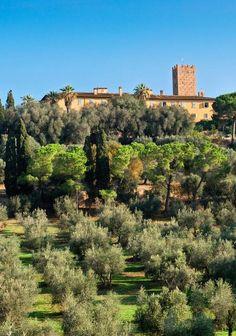 Tenuta Marsiliana in Tuscany