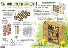 Discover recipes, home ideas, style inspiration and other ideas to try. Insect Hotel, Bug Hotel, Plan Hotel, Small Back Gardens, Forest School Activities, Garden Insects, Garden Terrarium, Save The Bees, Garden Planning