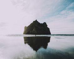 Nature | 100+ best free tree, sunset, beach, and ocean photos on Unsplash
