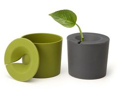rootcup - Grow New Plants From Plant Cuttings. This would be really good for getting new plants growing