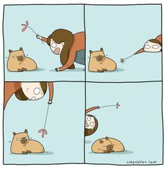 21 Adorable Cat Comics From a Russian Artist That Are Totally Accurate - Katzen - Crazy Cat Lady, Crazy Cats, I Love Cats, Cool Cats, Kitten Baby, Comic Cat, Cat Comics, Funny Comics, Cat Quotes