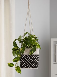 Shop our plant pots, flowerpots, cachepots, planters, and hanging planters to create a lush and stylish decor that reflects your tastes to a T. Decorative Planters, Hanging Planters, Planter Pots, Garden Bags, Plant Covers, Vinyl Tablecloth, House Plants Decor, Cactus Y Suculentas, Boho Decor