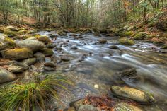 Laurel Creek Road Smokey Mountains National Park Tennessee