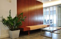 Plant Maintenance NYC - Office Plant Service and Maintenance New York City