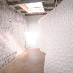 MakerFaire | Endograft Project: 3D printing architecture